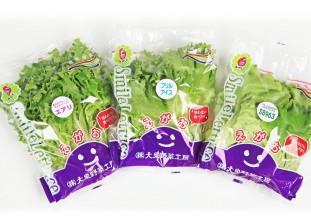 (株)大泉野菜工房; ?>
